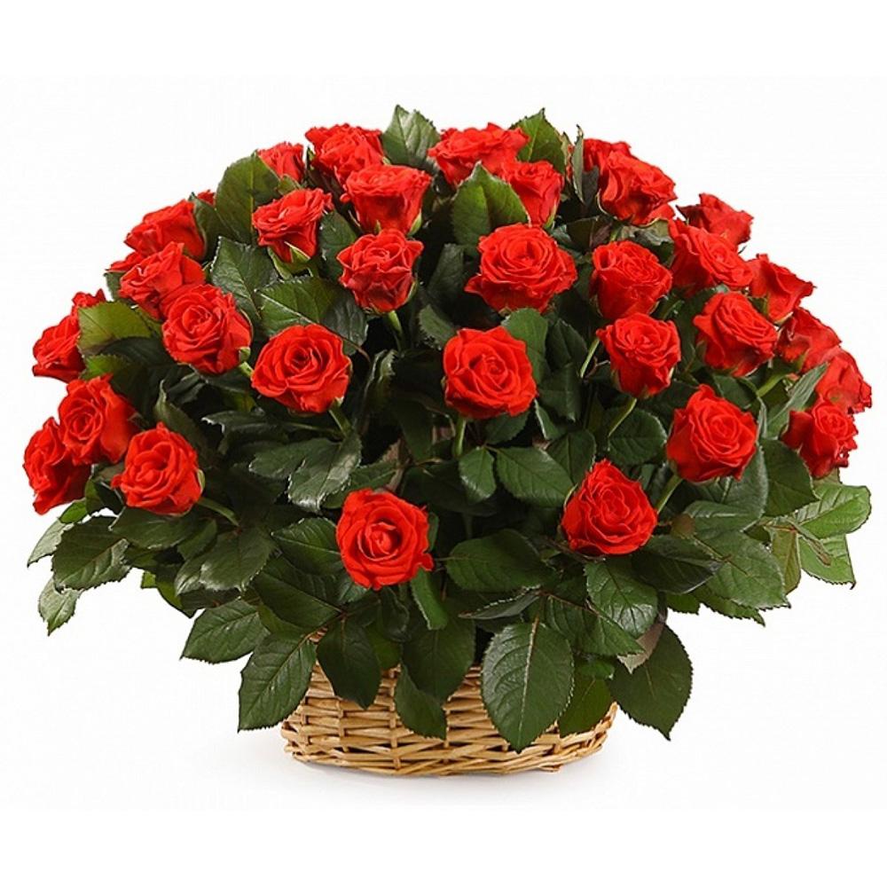 51 роза «Эльторо» в корзине