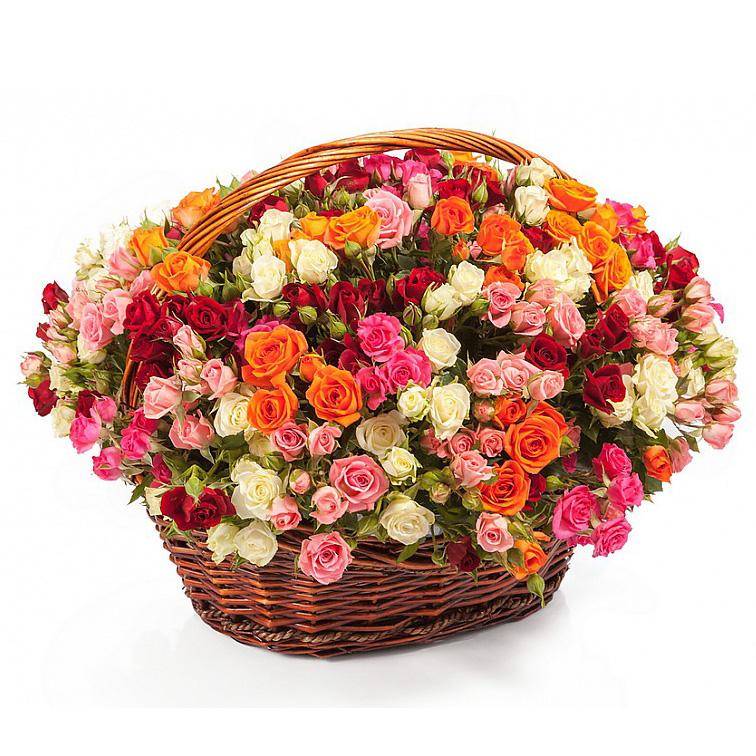 51 кустовая роза микс в корзине