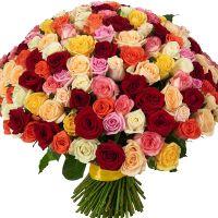 201 роза по акции (60-70 см)