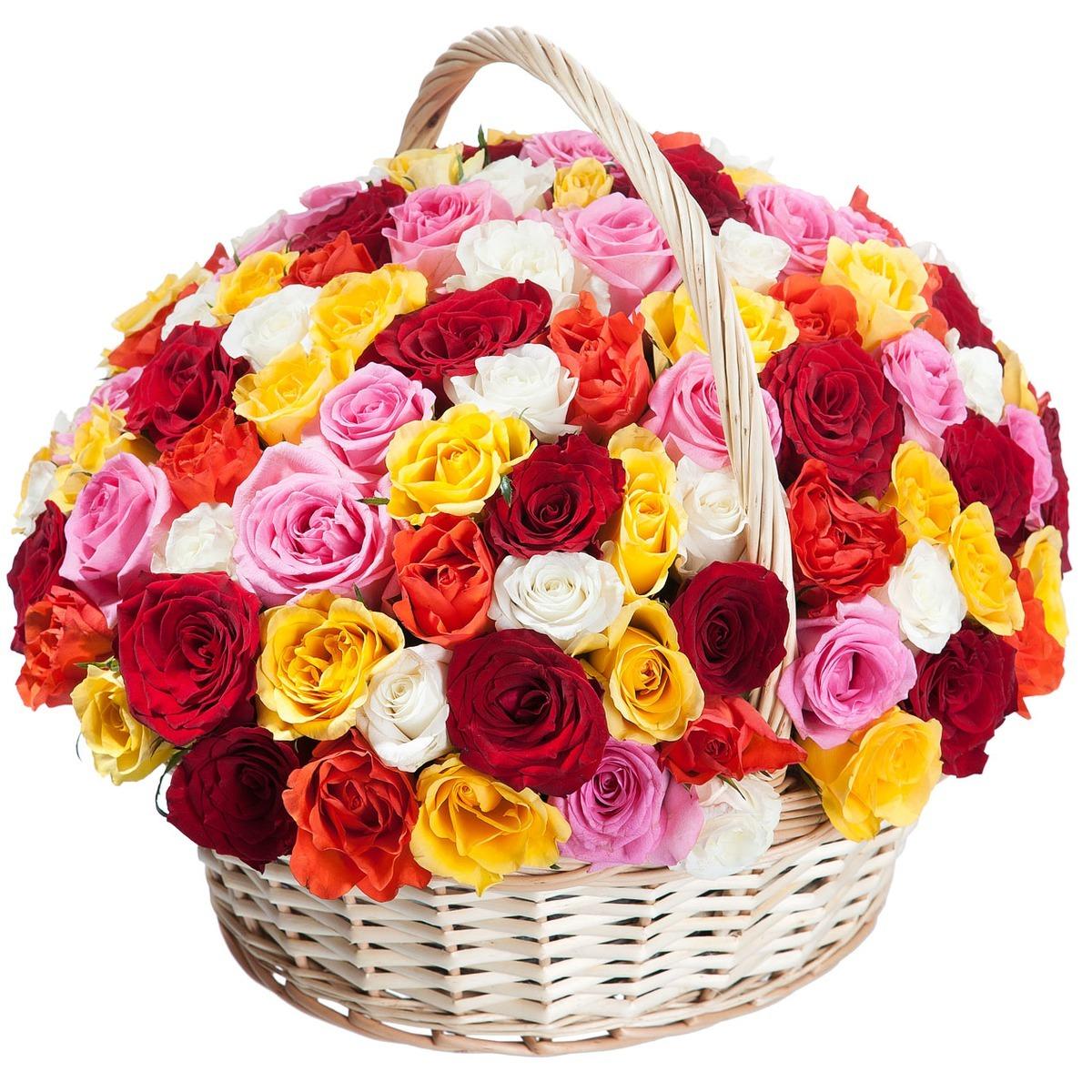 101 роза микс в корзине (АКЦИЯ)