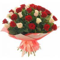 51 роза: бордовая + кремовая