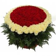 Корзина из 201 розы «Гран-при» + «Вайт Наоми»