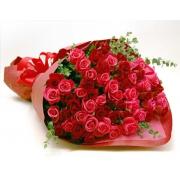 79 роз:  красная + алая