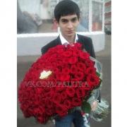 101 роза красная