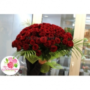 101 роза бордовая «Ред   Наоми»