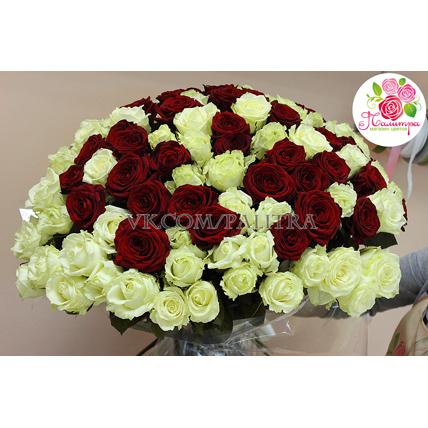 101 роза: «Вайт Наоми» + «Ред Наоми»