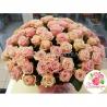 101 роза нежно-розовая
