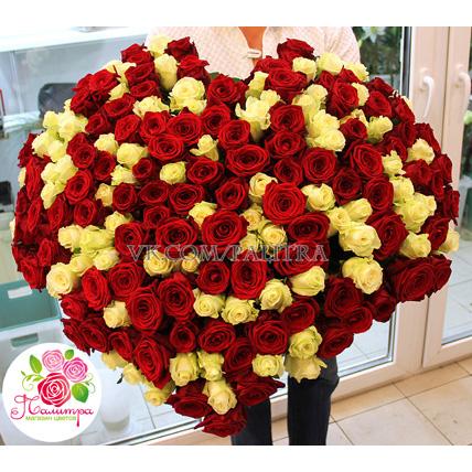 201 роза в форме сердца: белые + красные