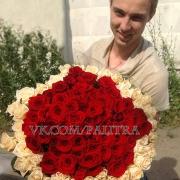 81 роза: красная + кремовая