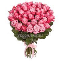 51 розовая роза «Дип Вотер»