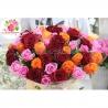 «Осенний микс« из 51 розы