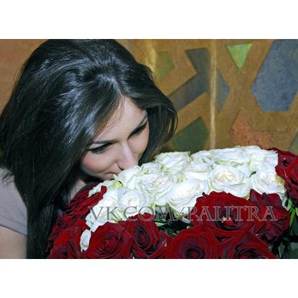 51 роза: красные + белые