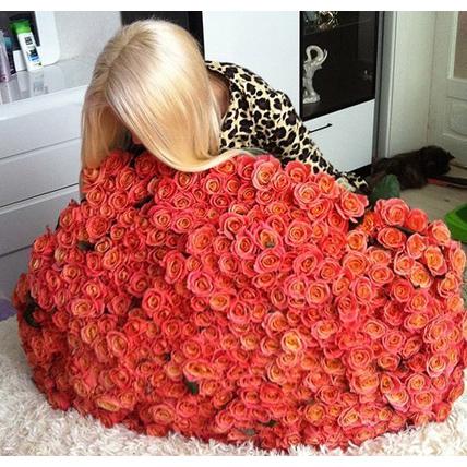333 персиковые розы «Мисс Пигги»