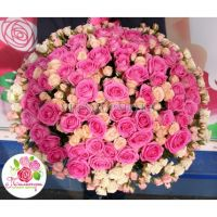 151 роза: розовые, кремовые, белые