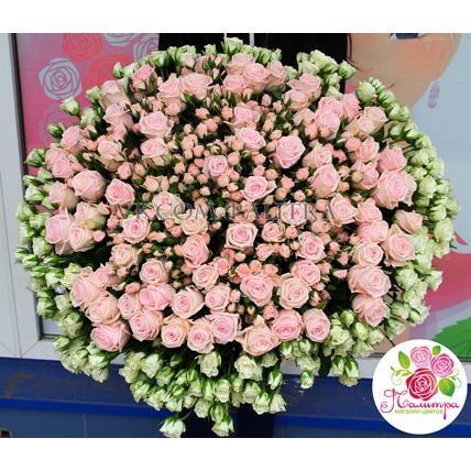 201 роза: нежно-розовая + кустовые розы