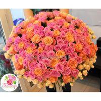 151 роза: коралловая + розовая + кустовые розы