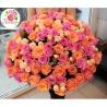 101 роза: розовая + коралловая + кустовые