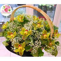 Корзина с орхидеями и гипсофилой большая