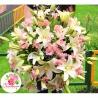 Букет с лилиями и альстромериями