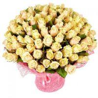 101 кремовая роза «Талея»