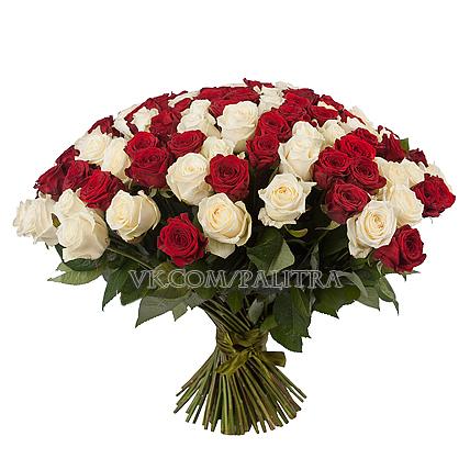 101 роза: красная + белая