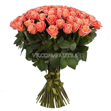 101 персиковая роза «Мисс Пигги»