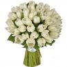 51 тюльпан   белый
