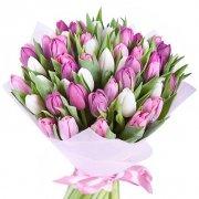 51 тюльпан: сиреневые + белые