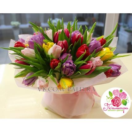 51 тюльпан (весенний МИКС)