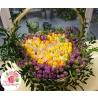 301 тюльпан в форме сердца в корзине