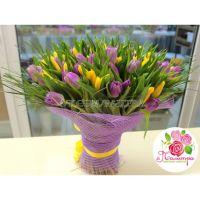 101 тюльпан: фиолетовые + желтый