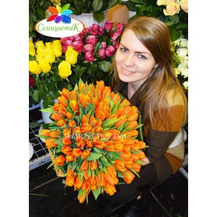 101 тюльпан оранжевый