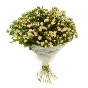 31 кустовая роза белая