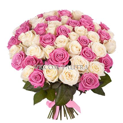 51 роза бело-розовая