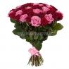 51 роза красно-розовая