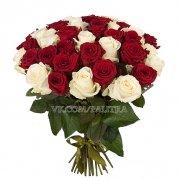 51 роза красно-белая