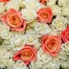 101 роза: коралловая + кустовая белая