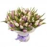 101 тюльпан : фиолетовый + белый