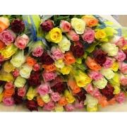 Роза 40 см  фото