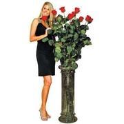 Роза 180 см фото
